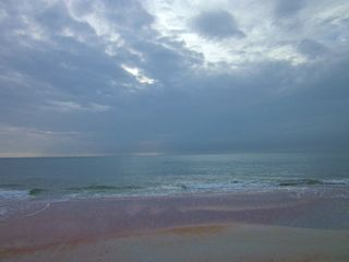 Ormond beach 028